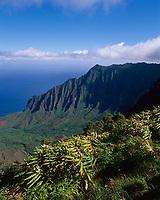 Kalalau Valley, Na Pali Coast State Park, Kauai, Hawaii, USA.