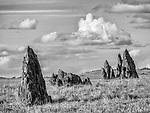 Tombstone rocks, Salt Spring Valley, Calif.