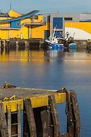 France, Pas-de-Calais (62), Côte d'Opale,Boulogne-sur-Mer, Port de pêche, chalutiers amarrés  //  France, Pas de Calais, Cote d'Opale (Opal Coast), Boulogne sur Mer,fishing port, trawlers moored
