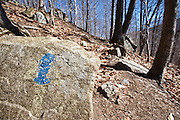 Old trail blaze painted on rock along the Frankenstein Cliff Trail in the White Mountains, New Hampshire USA during the spring months.
