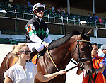 May 31, 2014: Scatman in the post parade of the G3 Aristides Stakes.  He is owned by Joseph Bucci, trained by Eddie Kenneally, and ridden by Julien Leparoux.  Mary M. Meek/ESW/CSM