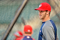 24 July 2012: Washington Nationals rookie outfielder Bryce Harper awaits his turn in the batting cage prior to a game against the New York Mets at Citi Field in Flushing, NY. The Nationals defeated the Mets 5-2 to take the second game of their 3-game series. Mandatory Credit: Ed Wolfstein Photo