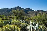 Spain, Gran Canaria, Roque Bentayga and inland landscape | Spanien, Gran Canaria, im Landesinnern, im Hintergrund der  Roque Bentaiga