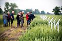 """31/05/17 - ENNEZAT - PUY DE DOME - FRANCE - Journees """"Les rencontres Agro 2017"""" organisees par LIMAGRAIN - Photot Jerome CHABANNE pour Limagrain"""
