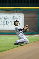 AZL Reds right fielder Reniel Ozuna (29) makes a sliding catch in foul territory against the AZL Giants on August 12, 2017 at Scottsdale Stadium in Scottsdale, Arizona. AZL Giants defeated the AZL Reds 1-0. (Zachary Lucy/Four Seam Images)
