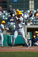 Vince Ippoliti (45) of the West Virginia Mountaineers at bat against the Illinois Fighting Illini at TicketReturn.com Field at Pelicans Ballpark on February 23, 2020 in Myrtle Beach, South Carolina. The Fighting Illini defeated the Mountaineers 2-1.  (Brian Westerholt/Four Seam Images)