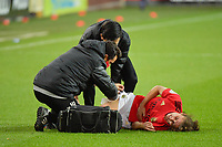 injury for Benfica's midfielder Pauleta  pictured during a female soccer game between RSC Anderlecht Dames and Portugese Benfica Ladies  in the second qualifying round for the Uefa Womens Champions League of the 2020 - 2021 season , Wednesday 18 th of November 2020  in ANDERLECHT , Belgium . PHOTO SPORTPIX.BE | SPP | DIRK VUYLSTEKE