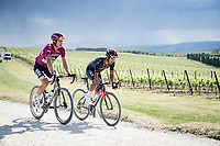 """Maglia Ciclamino / Points Leader Jersey Peter Sagan (SVK/BORA - hansgrohe) & Jhonatan Narváez (ECU/INEOS Grenadiers) not rushing it over the final gravel sector of the day.<br /> <br /> 104th Giro d'Italia 2021 (2.UWT)<br /> Stage 11 from Perugia to Montalcino (162km)<br /> """"the Strade Bianche stage""""<br /> <br /> ©kramon"""