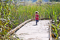 Girl running on boardwalk trail through wetland, Spencer Island, Everett, Washington, USA