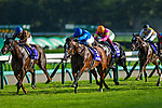 FUNABASHI,JAPAN-SEP 29: Tower of London #8,ridden by Christophe Lemaire,wins the Sprinters Stakes at Nakayama Racecourse on September 29,2019 in Funabashi,Chiba,Japan. Kaz Ishida/Eclipse Sportswire/CSM