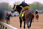 LOUISVILLE, KY -APR 25: Kentucky Derby hopeful Magnum Moon trains for the Kentucky Derby at Churchill Downs, Louisville, Kentucky with rider Nick Bush. (Photo by Mary M. Meek/Eclipse Sportswire/Getty Images)