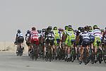 he peloton pass the first bonus sprint point near Umm Al Qahab during Stage 3 of the 2012 Tour of Qatar running 146.5km from Dukhan Souq, Dukhan to Al Gharafa, Qatar. 7th February 2012.<br /> (Photo Eoin Clarke/Newsfile)