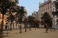 A view of Place Dauphine, in the Ile de la Cité in Paris, from the center of its triangular garden, with the trees and the benches, surrounded by the typical buildings.<br /> <br /> You can download this file for (E&PU) only, but you can find in the collection the same one available instead for (Adv).