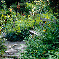 A path fashioned out of split logs leads to a bench nestled amongst the lush planting in this garden