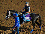 October 27, 2014:  Imperia, trained by Kiaran McLaughlin, exercises in preparation for the Breeders' Cup Juvenile Turf at Santa Anita Race Course in Arcadia, California on October 27, 2014. John Voorhees/ESW/CSM