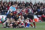 Dragons scrum half Wayne Evans.<br /> RaboPro 12<br /> Newport Gwent Dragons v Connacht<br /> Rodney Parade<br /> 23.03.14<br /> <br /> ©Steve Pope-SPORTINGWALES