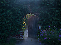 A small door in an ivy-clad brick wall opens into another part of the garden