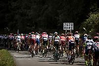 Peloton climbing. <br /> <br /> Stage 5: Lorient > Quimper (203km)<br /> <br /> 105th Tour de France 2018<br /> ©kramon