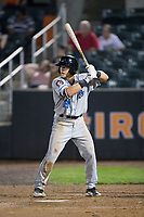 Taylor Walls (21) of the Hudson Valley Renegades at bat against the Aberdeen IronBirds at Leidos Field at Ripken Stadium on July 27, 2017 in Aberdeen, Maryland.  The IronBirds defeated the Renegades 3-0 in game two of a double-header.  (Brian Westerholt/Four Seam Images)