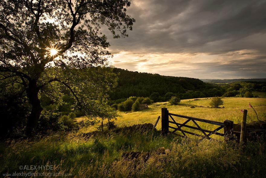 Hay meadows in storm light, Birchover, Peak District National Park, Derbyshire, July.