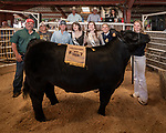 Waters and Sons custom farming, proud buyers of Sutter Creek FFA's Hailey Young's Champeion Steer, 56th Junior Livestock Auction, Back in the Saddle Again, Sunday at the 82nd Amador County Fair, Plymouth, California<br /> .<br /> .<br /> .<br /> @AmadorCountyFair, #1SmallCountyFair, #VisitAmador, #PlymouthCalifornia, #AmadorCountyFair, #Best4DaysOfSummer, #AmadorCounty, #26thDAA