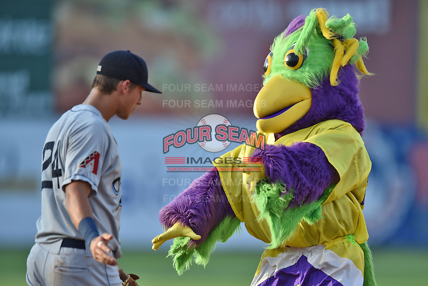 Mobile BayBears third baseman Jake Lamb #24 dances between innings with BirdZerk during the Southern League All Star game at AT&T Field on June 17, 2014 in Chattanooga, Tennessee. The Southern Division defeated the Northern Division 6-4. (Tony Farlow/Four Seam Images)