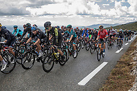 peloton up the Col de la Faye<br /> <br /> 107th Tour de France 2020 (2.UWT)<br /> (the 'postponed edition' held in september)<br /> Stage 3 from Nice to Sisteron 198km<br /> ©kramon