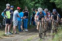 Stijn Devolder (BEL/Veranda's Willems-Crelan) leads the peloton on a gravel section<br /> <br /> 2nd Dwars door het Hageland 2017 (UCI 1.1)<br /> Aarschot > Diest : 193km