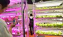 Smart Grid Exhibition 2012