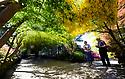 15/05/19<br /> <br /> Bill and Kathleen Walker admire the Laburnum Arch.<br /> <br /> Bodnant Garden, Conwy, North Wales.<br /> <br /> All Rights Reserved, F Stop Press Ltd +44 (0)7765 242650 www.fstoppress.com rod@fstoppress.com