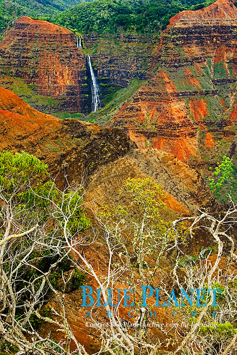 Waipo`o or Waipoo Falls, Waimea Canyon, the 'Grand Canyon of the Pacific Ocean', approximately one mile wide and ten miles long, more than 3,500 feet deep, State Park, Kauai, Hawaii