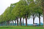 Europa, DEU, Deutschland, Nordrhein Westfalen, NRW, Westfalen, Bad Sassendorf - Weslarn, Allee, Baumallee, Auto, KFZ, Strassenverkehr, Kategorien und Themen, Natur, Umwelt, Pflanzen, Pflanzenkunde, Botanik, Biologie, Tourismus, Touristik, Touristisch, Touristisches, Urlaub, Reisen, Reisen, Ferien, Urlaubsreise, Freizeit, Reise, Reiseziele, Ferienziele....[Fuer die Nutzung gelten die jeweils gueltigen Allgemeinen Liefer-und Geschaeftsbedingungen. Nutzung nur gegen Verwendungsmeldung und Nachweis. Download der AGB unter http://www.image-box.com oder werden auf Anfrage zugesendet. Freigabe ist vorher erforderlich. Jede Nutzung des Fotos ist honorarpflichtig gemaess derzeit gueltiger MFM Liste - Kontakt, Uwe Schmid-Fotografie, Duisburg, Tel. (+49).2065.677997, ..archiv@image-box.com, www.image-box.com]