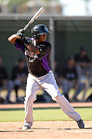 Colorado Rockies second baseman Wesley Jones (65) during an instructional league game against the Los Angels Angels of Anaheim on September 30, 2013 at Tempe Diablo Stadium Complex in Tempe, Arizona.  (Mike Janes/Four Seam Images)