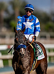 MAR 07: Thousand Words with Flavien Prat after the San Felipe Stakes at Santa Anita Park in Arcadia, California on March 7, 2020. Evers/Eclipse Sportswire/CSM