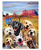 Howard, REALISTIC ANIMALS, REALISTISCHE TIERE, ANIMALES REALISTICOS, selfies,dogs,route 66,monument valley, paintings+++++,GBHRPROV242,#a#, EVERYDAY