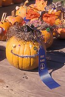 Halloween Pumpkin decorating by children - winning a blue ribbon prize