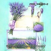 Isabella, FLOWERS, BLUMEN, FLORES, paintings+++++,ITKE041835-S,#f#, EVERYDAY