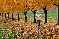 Young girl, 12-14, runs along a row of golden maples trees through leaves beneath the trees.