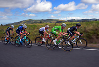 Stage Two - Hydro Heat (Cambridge -Roto o rangi - Pukeatea). 2019 Grassroots Trust NZ Cycle Classic UCI 2.2 Tour from St Peter's School in Cambridge, New Zealand on Thursday, 24 January 2019. Photo: Dave Lintott / lintottphoto.co.nz