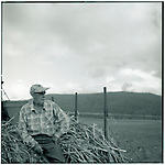 JUNE 1995    -  Queensland, Australia   - On the Cook Highway southband in Queensland from Cairns a farmer tends to planting Sugar Cane on his families farm..