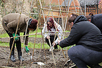 Pictured: (CASE STUDY CENTRE, WITH OTHER USERS OF THE PROJECT, REPORTER DAWN FOSTER HAS YET TO GIVE ME ANY NAMES) Friday 04 March 2016<br /> Re:  Oxfam community project, Duffryn Community Link <br /> located at Tredegar House near Newport, south Wales, UK. The project involves gardening with people in poverty.