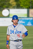 Ryan Scott (15) of the Ogden Raptors warms up in the outfield before the game against the Orem Owlz in Pioneer League action at Home of the Owlz on June 20, 2015 in Provo, Utah. The Raptors defeated the Owlz 9-6.   (Stephen Smith/Four Seam Images)