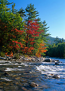 Autumn foliage along the Swift River, near the Kancamagus Highway (route 112), in the White Mountains of New Hampshire. During the autumn foliage season, the Kancamagus Highway is a popular scenic byway.