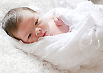Newborn & Children Galleries