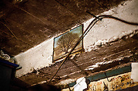 A picture of a tree in the family home of Elvis Causevic. <br /> <br /> In 1992 while volunteering at the Varazdin refugee camp Panos photographer Bjoern Steinz met and became close to Elvis, a Bosnian Muslim refugee, and his family. They shared the hardships of camp life together which Steinz documented. While the prints were archived for many years two of the images always returned to Bjoern's thoughts. 25 years later he set out to try and find out what had happened to Elvis and his family in the intervening years. Modern social media made the task surprisingly easy and they were reunited in Hadzici where Elvis now lives with his family.