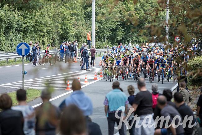 Peloton<br /> <br /> <br /> 51th GP Jef 'Poeske' Scherens 2017 <br /> Leuven - Leuven (13local laps/153.7km)