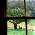 Couple, photographed through window, sitting on bench under apple tree