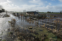Flooding in the Somerset Levels, village of Burrowbridge. 8-2-14