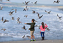 06/04/16 <br /> <br /> As the Easter holiday weather continues to improve, cousins, Freya and Jasper Peterken feed bread to seagulls at Westward Ho! in North Devon.<br /> <br /> All Rights Reserved: F Stop Press Ltd. +44(0)1335 418365   +44 (0)7765 242650 www.fstoppress.com