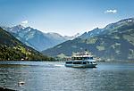 Oesterreich, Salzburger Land, bei Thumersbach: der Zeller See vor den schneebedeckten Gipfeln der Glocknergruppe (Kitzsteinhorn) | Austria, Salzburger Land, near Thumersbach: Zeller Lake with snow capped summits of Glockner mountain range (Kitzsteinhorn summit)